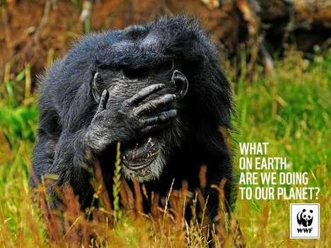 Heartbreaking Emotive Animal Ads