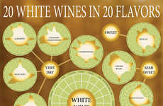 White Wine-Classifying Infographics - Sean Seidell's Colorful Chart Classifies 20 Tasty White Wines