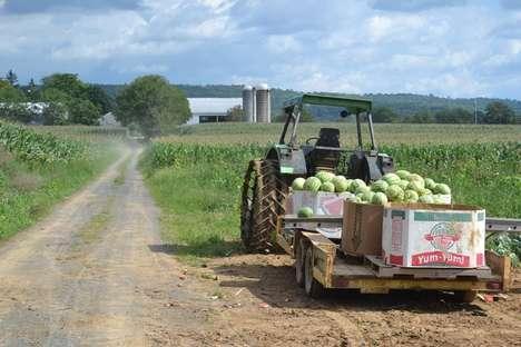 Mission-Driven Food Distributors
