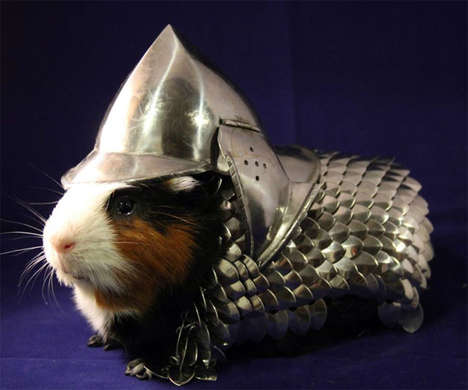 Armored Pet Costumes