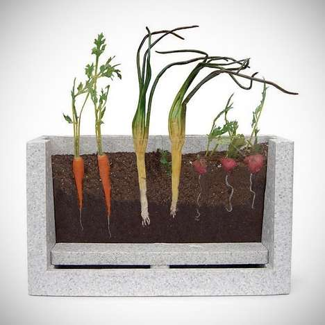 Observatory Vegetable Growing Kits