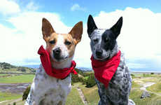 Bug-Repelling Canine Bandanas - The 'Insect Shield Dog Bandana' Protects Pets Against Harmful Bugs
