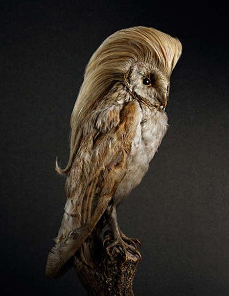 Wigged Avian Snapshots