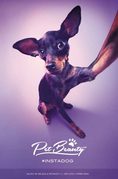 Canine Selfie Ads