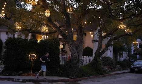 Illuminated Arboreal Installations