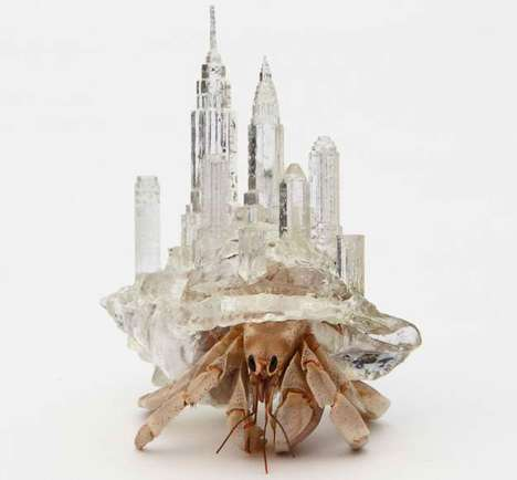 Sculptural Hermit Crab Shells