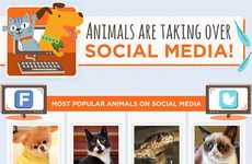 Internet Pet Popularity Infographics