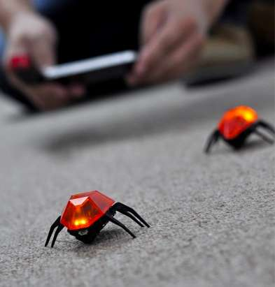 Human-Controlled Cockroach Robots