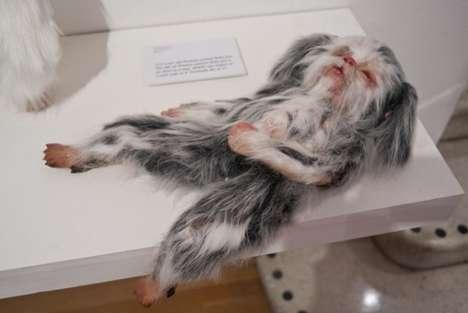 Human Animal Hydrid Art