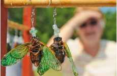 Insects as Jewelry - Cape Cod Cicada Swarms made into Insect Jewelry