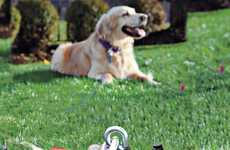 Advanced Dog Anchors - The 'SUREswivel' Pet Tether Safely Keeps Your Pet to One Spot