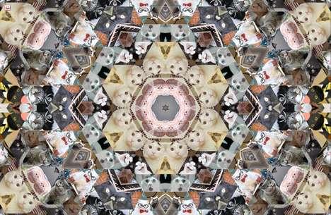 Cat Meme Kaleidoscopes