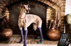 Sock-Covered Canine Ads - These Hyundai Advertisements Reiterate the Brand's Luxury Cushions