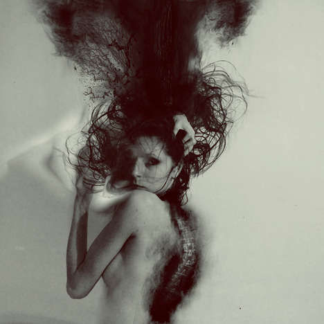 Dark Metamorphosis Photography
