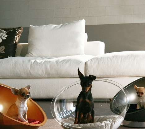 Bubble Dog Baskets