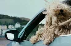 Dog-Approved Automobile Ads - Volkswagen's 'Woofwagen' Ads Show Cars for Pets