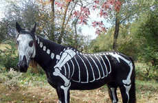 Horsey Halloween Costumes - Sandy Cramer Painted a Skeleton Costume onto her Black Horse