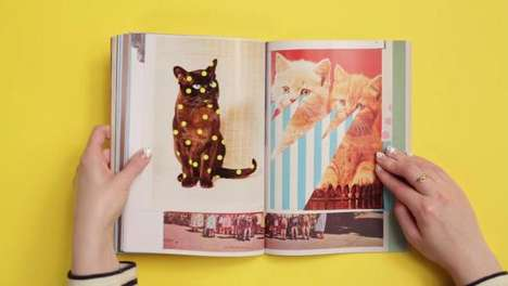 Cat-Centric Magazines