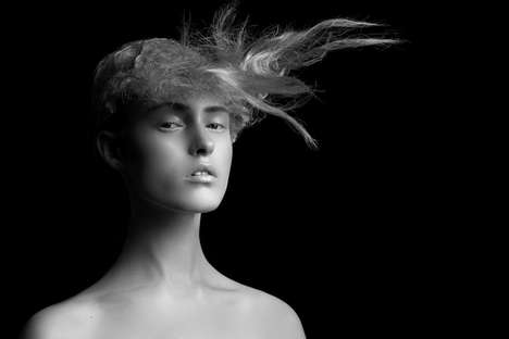 Sculptural Hairstyle Portraits