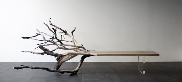 59 Rustic Arboreal Furnishings
