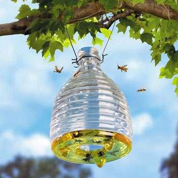 Ornamental Eco Wasp Traps