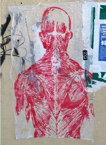 Anatomical Street Art