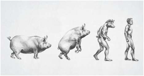 Comparing Obese People to Animals