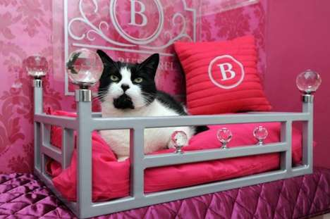 Luxurious Feline Vacations