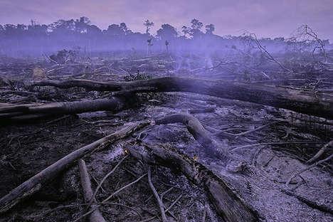 Destruction Demonstrating Eco-Photography