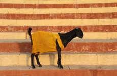 Well-Dressed Animal Art - Artist Alexander Gorlizki's Photo Series Features Goats in Snazzy Sweaters