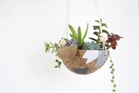 Upcycled Coconut Planters - Add Some Tropical Charm to Your Decor with These DIY Coconut Planters