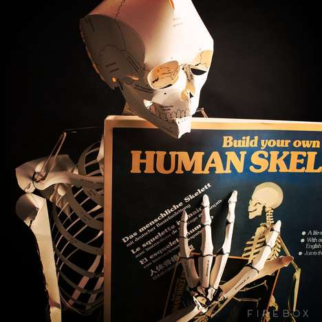 Life-Sized Skeletal Cardboard Cutouts