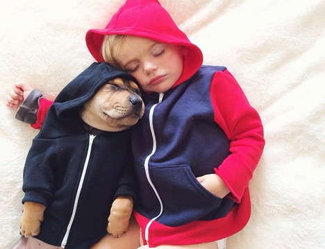 Best Friend Napping Photography