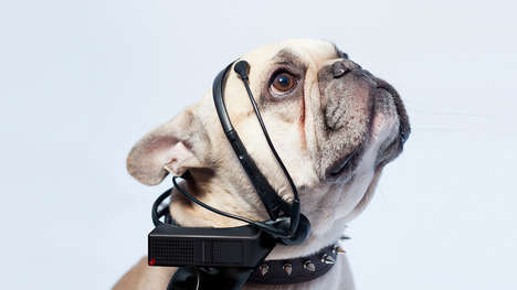 Mind-Reading Dog Devices