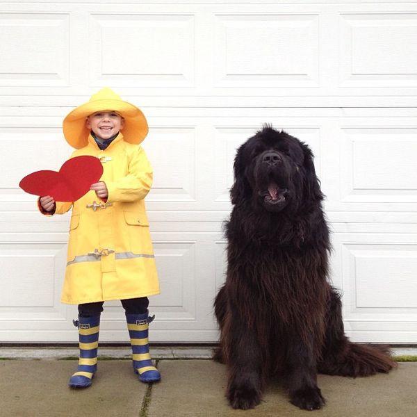 29 Heartfelt Pet Photographs