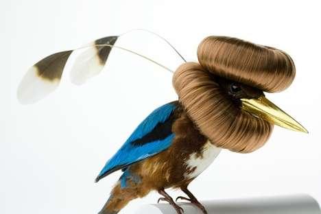 Avian Makeover Art