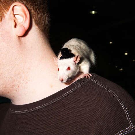 Fringe Animal Photography