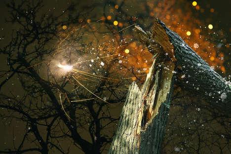 Beautifully Explosive Nature Photography