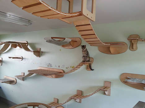 Wall-Mounted Cat Furniture - The Goldtatze Collection Creates Complex Jungle Gyms for Pets