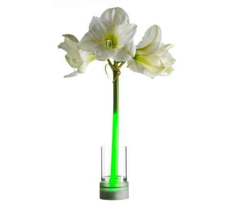 Illuminated Flower Stem Vases