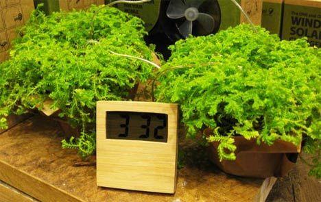 20 Subtly Sustainable Clocks