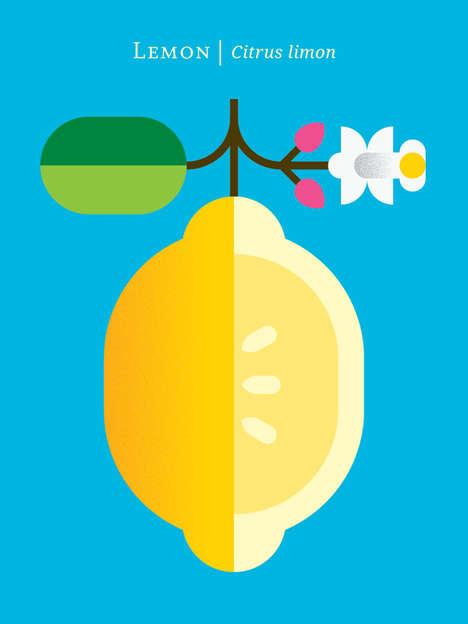 Succulent Graphic Fruit Illustrations