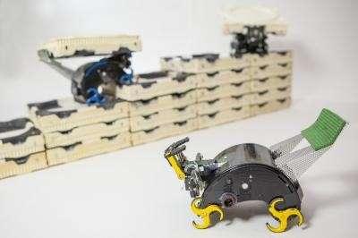 Termite-Inspired Building Robots