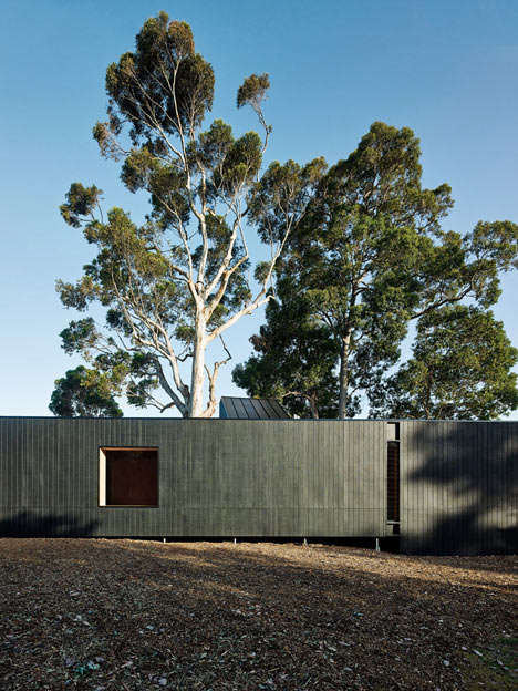 Sustainable H-Shaped Homes - The H-Shaped Karri Loop House Bends & Raises Itself Around Three Trees