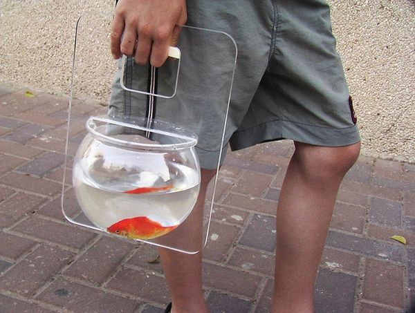 26 Unusual Pet Carrier Creations