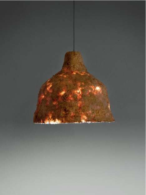 Fungus-Covered Light Fixtures