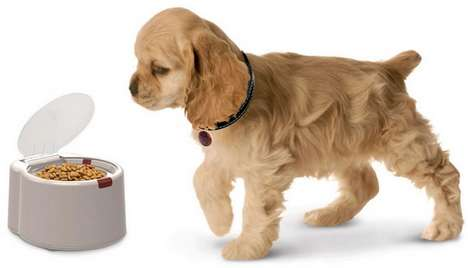 Microchip-Activated Pet Feeders - The Wonderbowl Pet Feeder Stops Greedy Pets from Stealing Food
