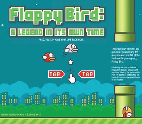 Flying Bird Game Infographics