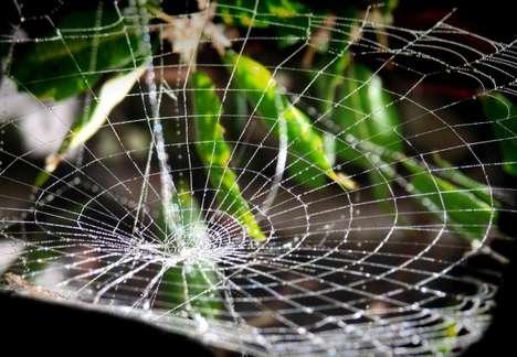 Synthesized Cobweb Cosmetics
