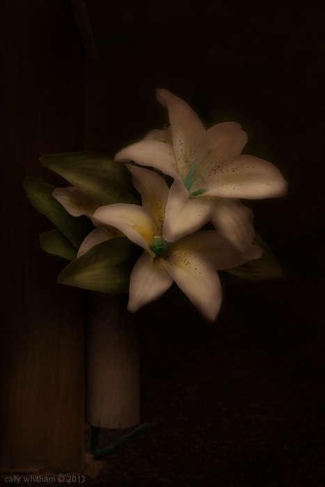 Artificial Flower Portraits